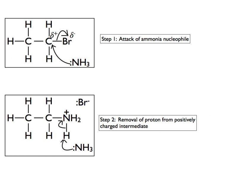 nuc-sub-of-halogenoalkane-by-ammonia-2-001