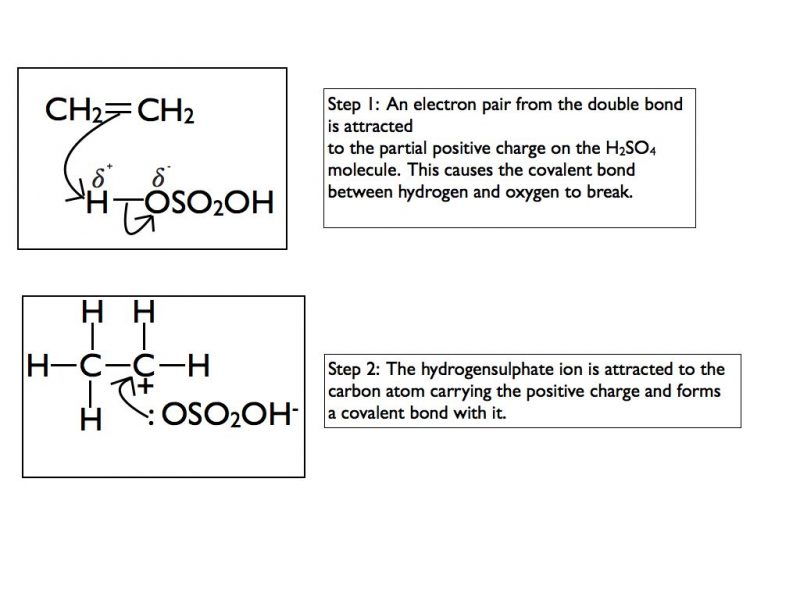 electrophilic-addition-h2so4-001