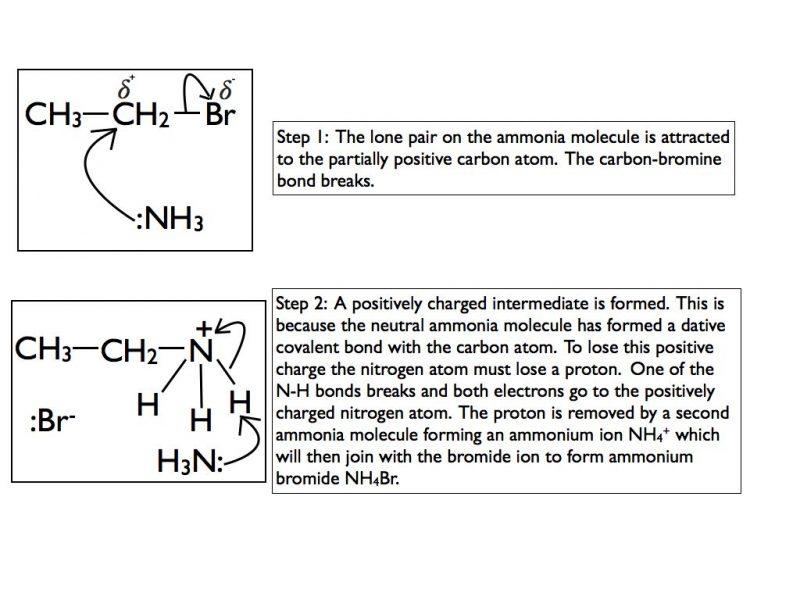 nuc-sub-ammonia