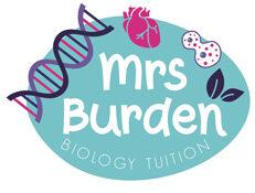 mrs burden biology